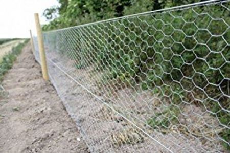 Picture for category Rabbit wire mesh