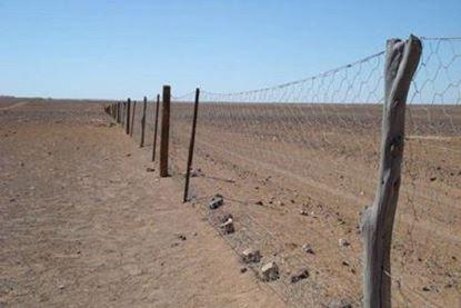 Plasa rabitz 0.8 mm / 1 x 25 m pentru gard