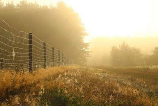 Plasa gard sudata zincata 1 x 20 m pentru imprejmuiri